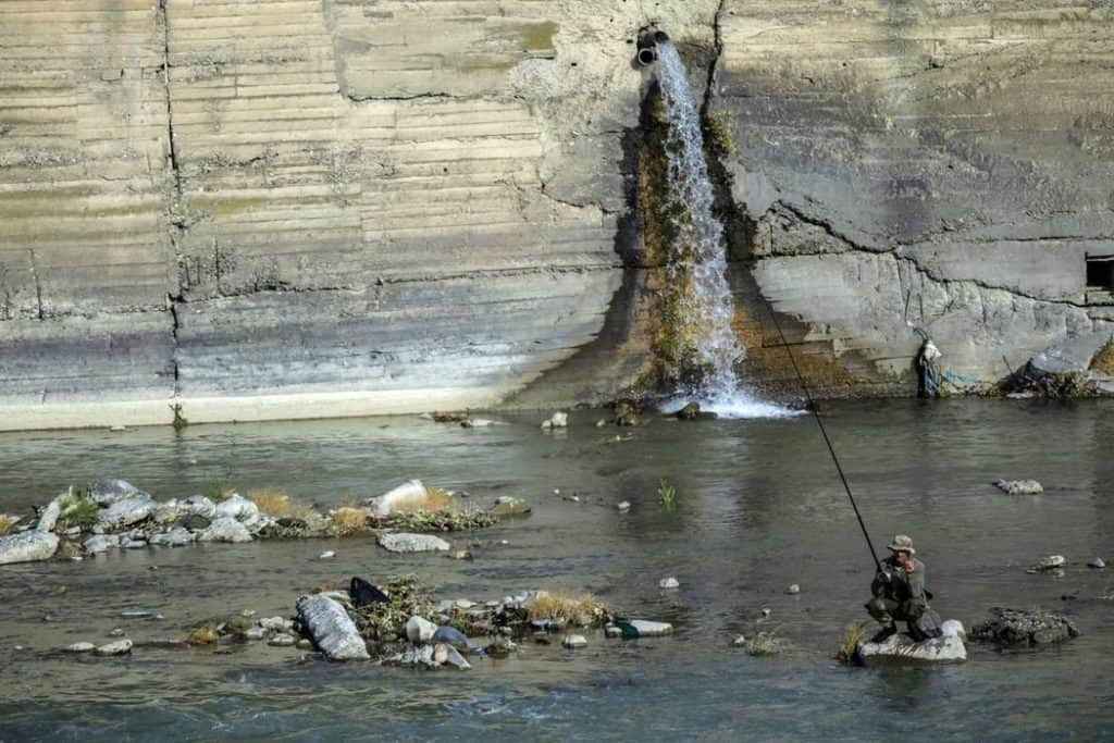 Everything you want to know about fishing trips